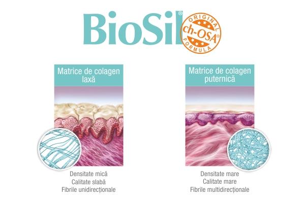 BioSil generator avansat de colagen natural